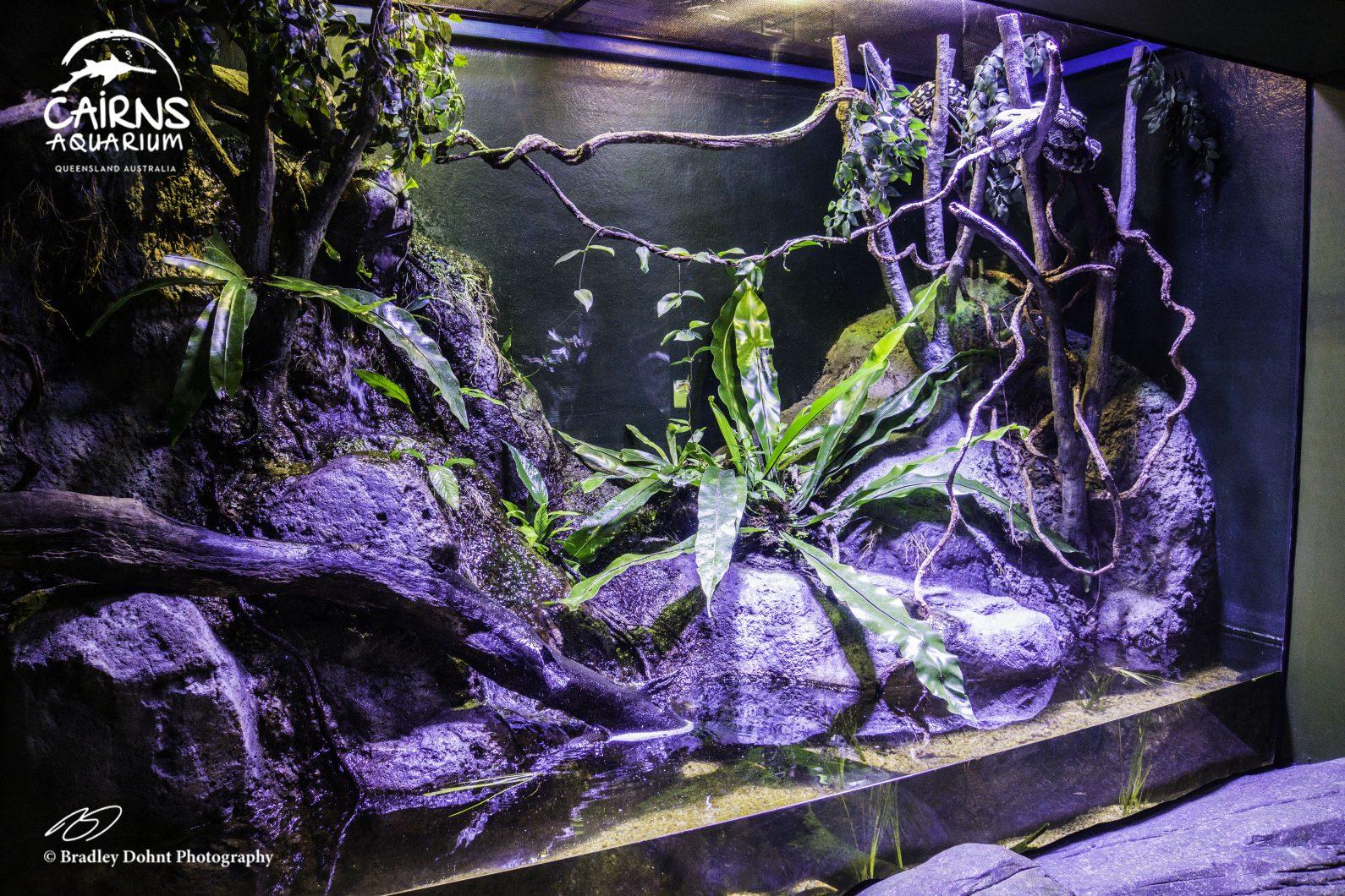 orphek фары для аквариума с пресной водой