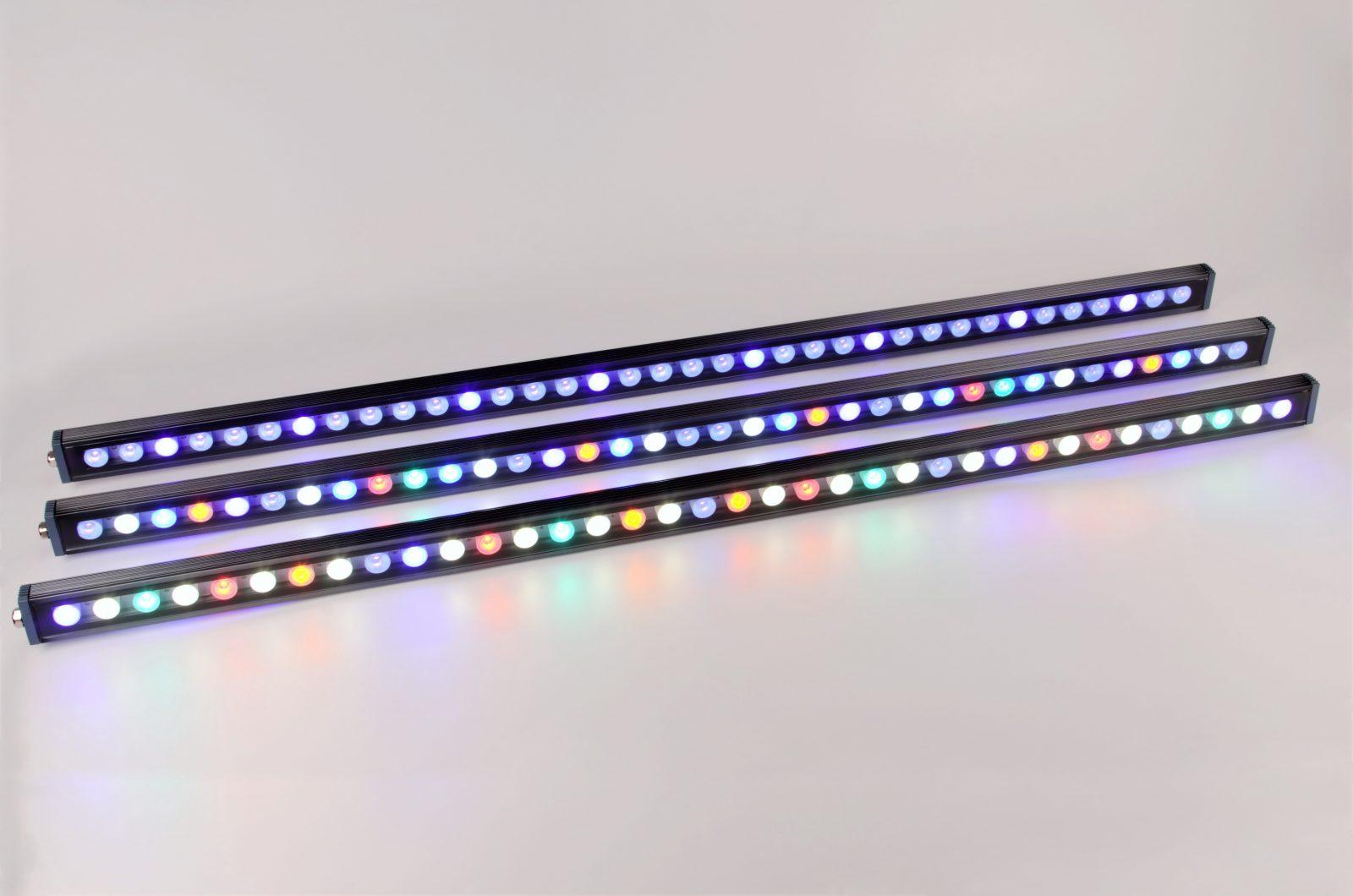 সেরা LED স্ট্রিপ রিফ ট্যাঙ্ক