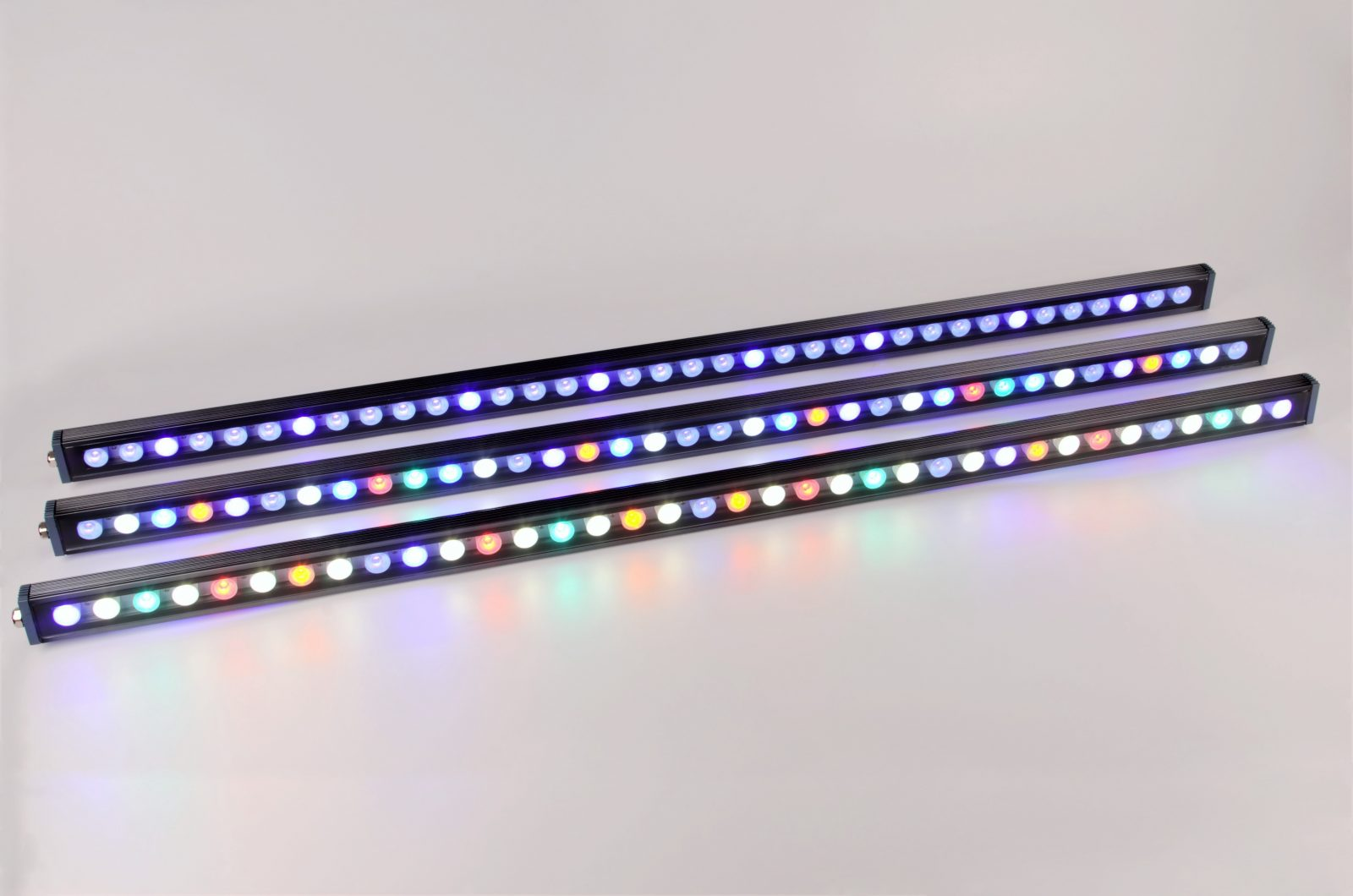 Striscia LED per barriera corallina