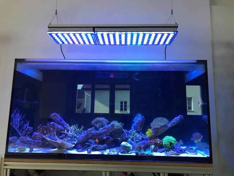 illuminazione a led pop corallo