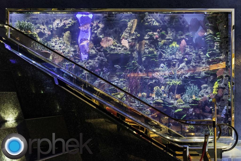 éclairage LED d'aquarium de récif en eau profonde