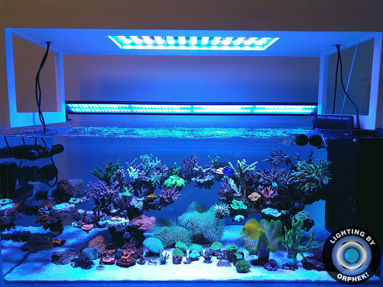2020-best-aquarium-light-orphek-atlantik