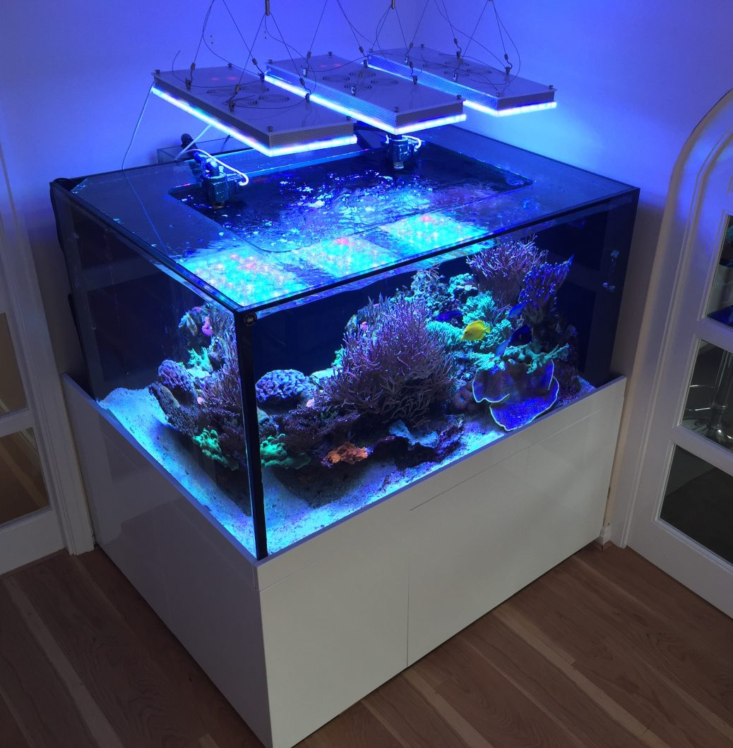 2020 Atlantik beste aquarium LED