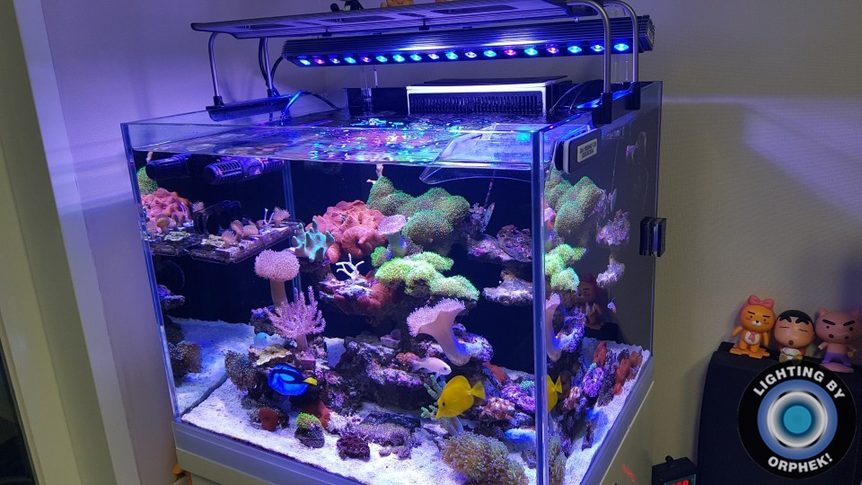 Orphek-OR3-LED-bar-Reef-LED-light