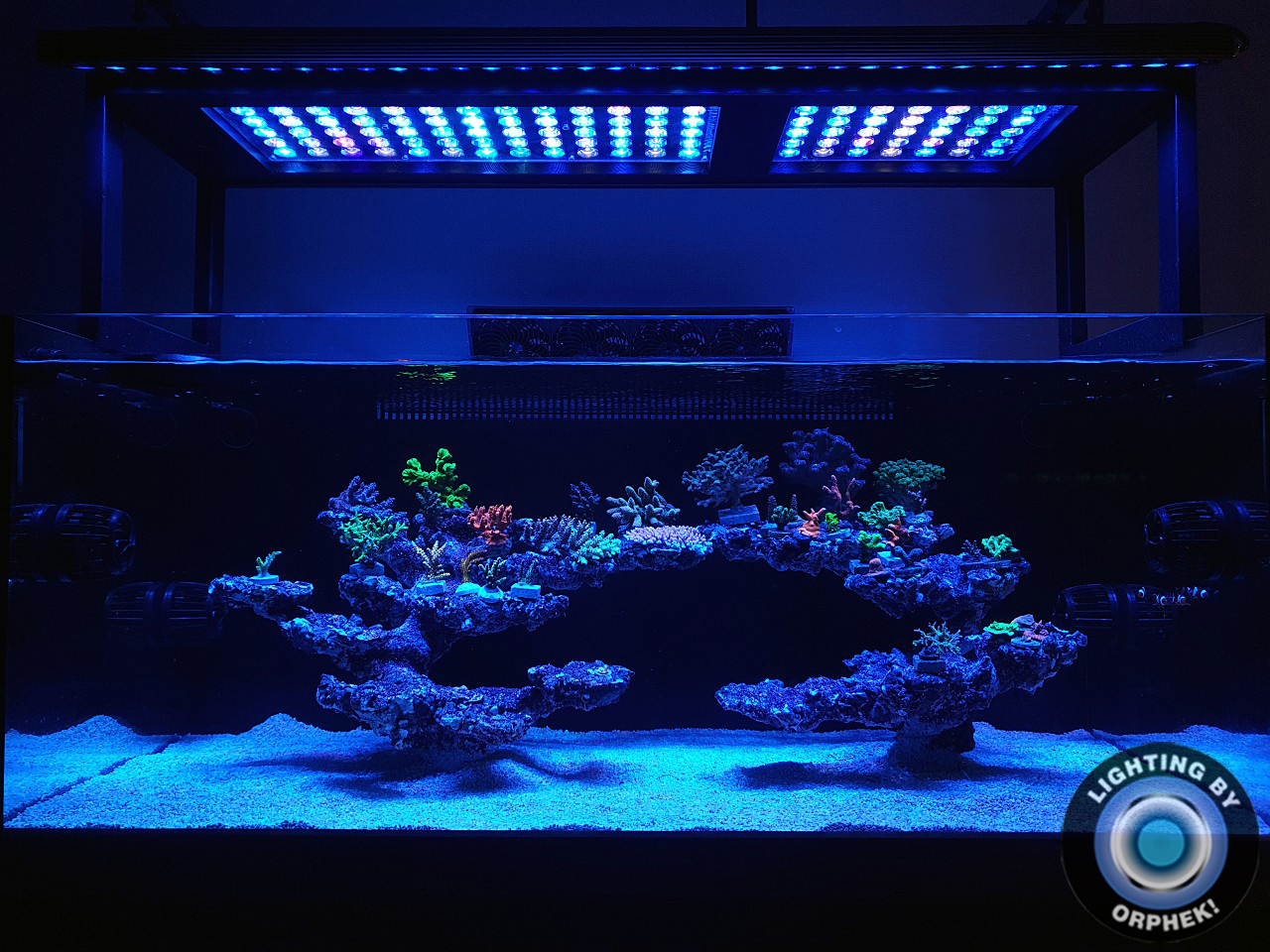 Orphek-reef-aquarium-LED-lighting