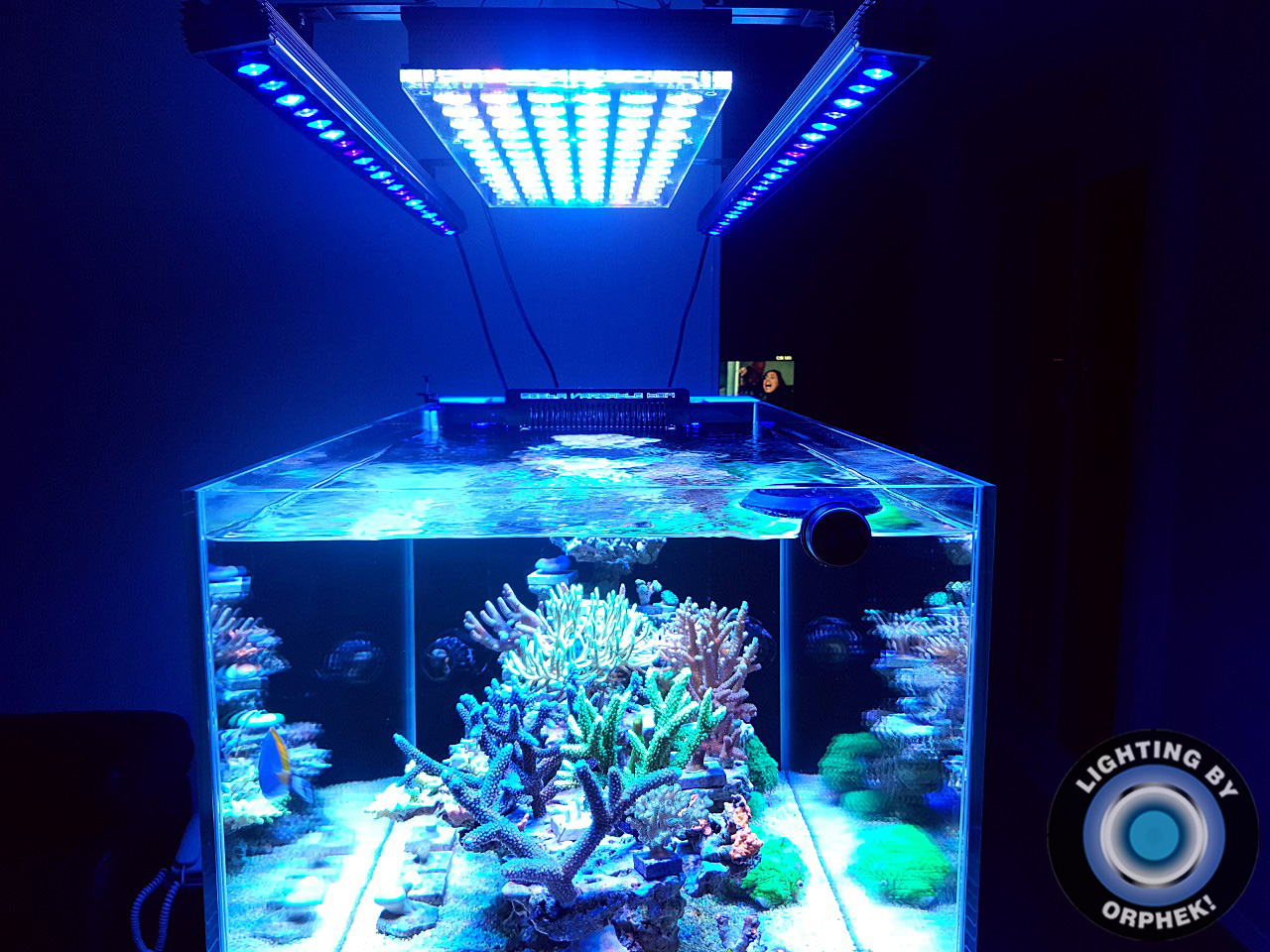 Orphek-reef-aquarium-LED-light-OR3-Atlantik