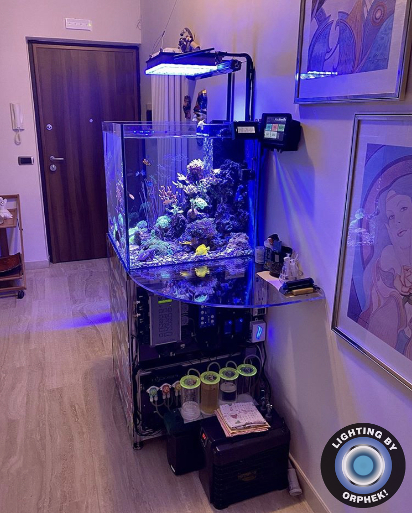 Cube aquarium with Orphek LED Lighting solutions