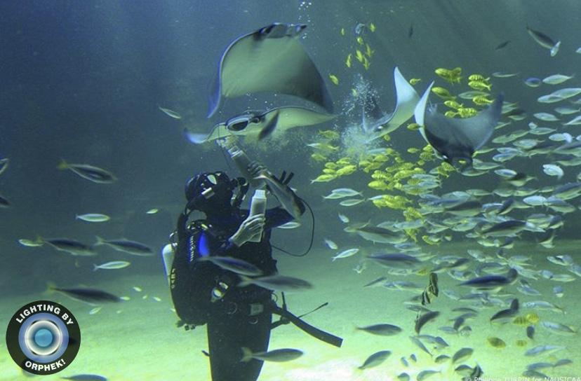 iluminación más fuerte del acuario 2021 orphek