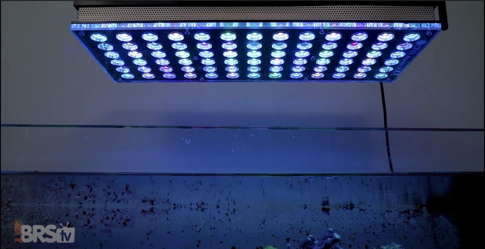 Orphek Atlantik Najlepsze oświetlenie LED do akwarium rafowego