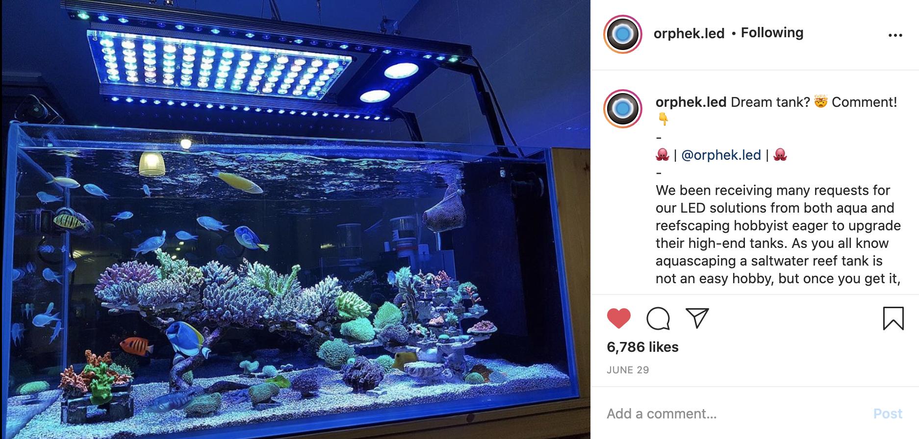 mejor luz led para tanque de arrecife