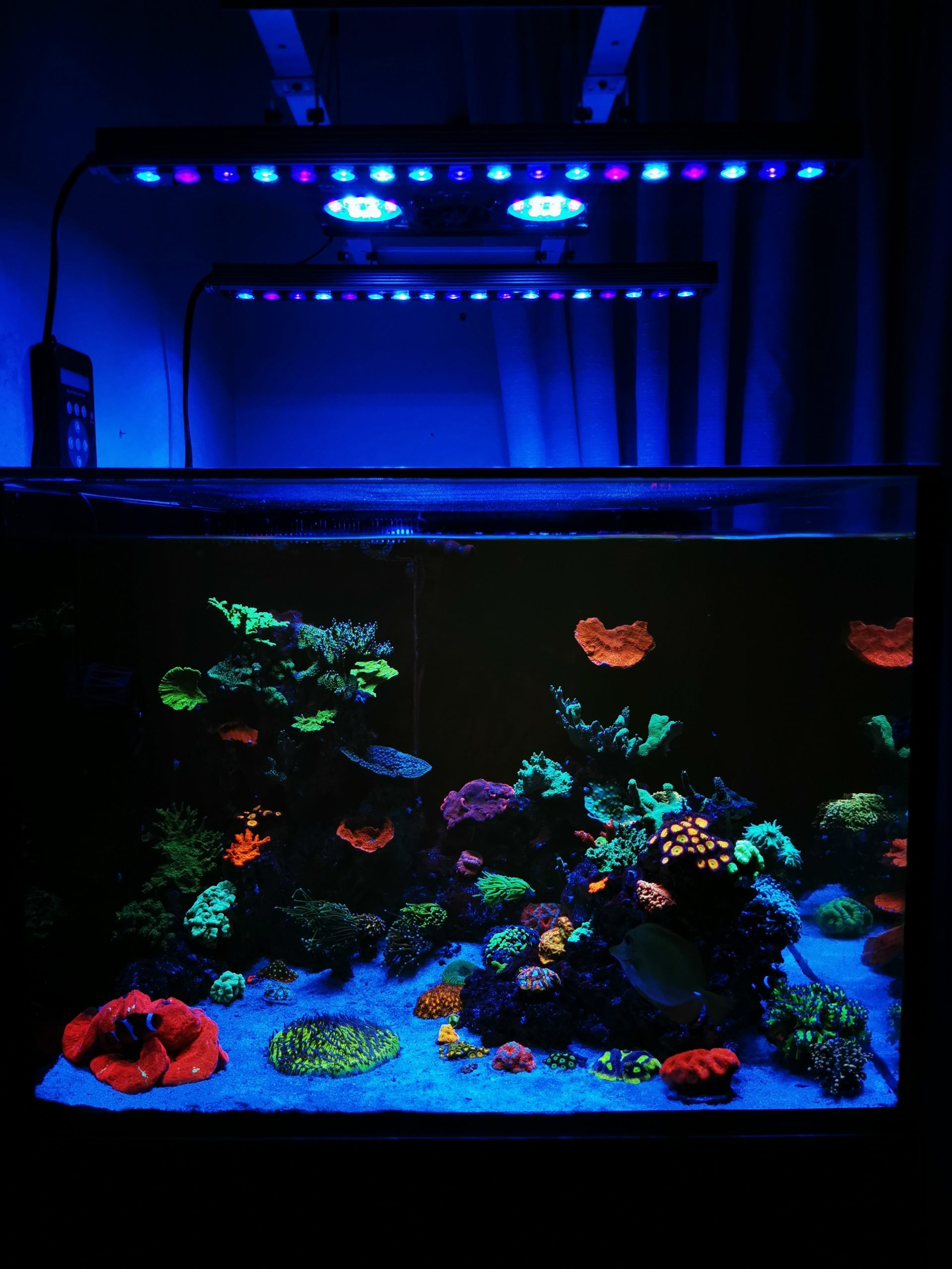 Orphek-OR3-Reef-Aquarium-LED-Bars-combined-with-other-brands