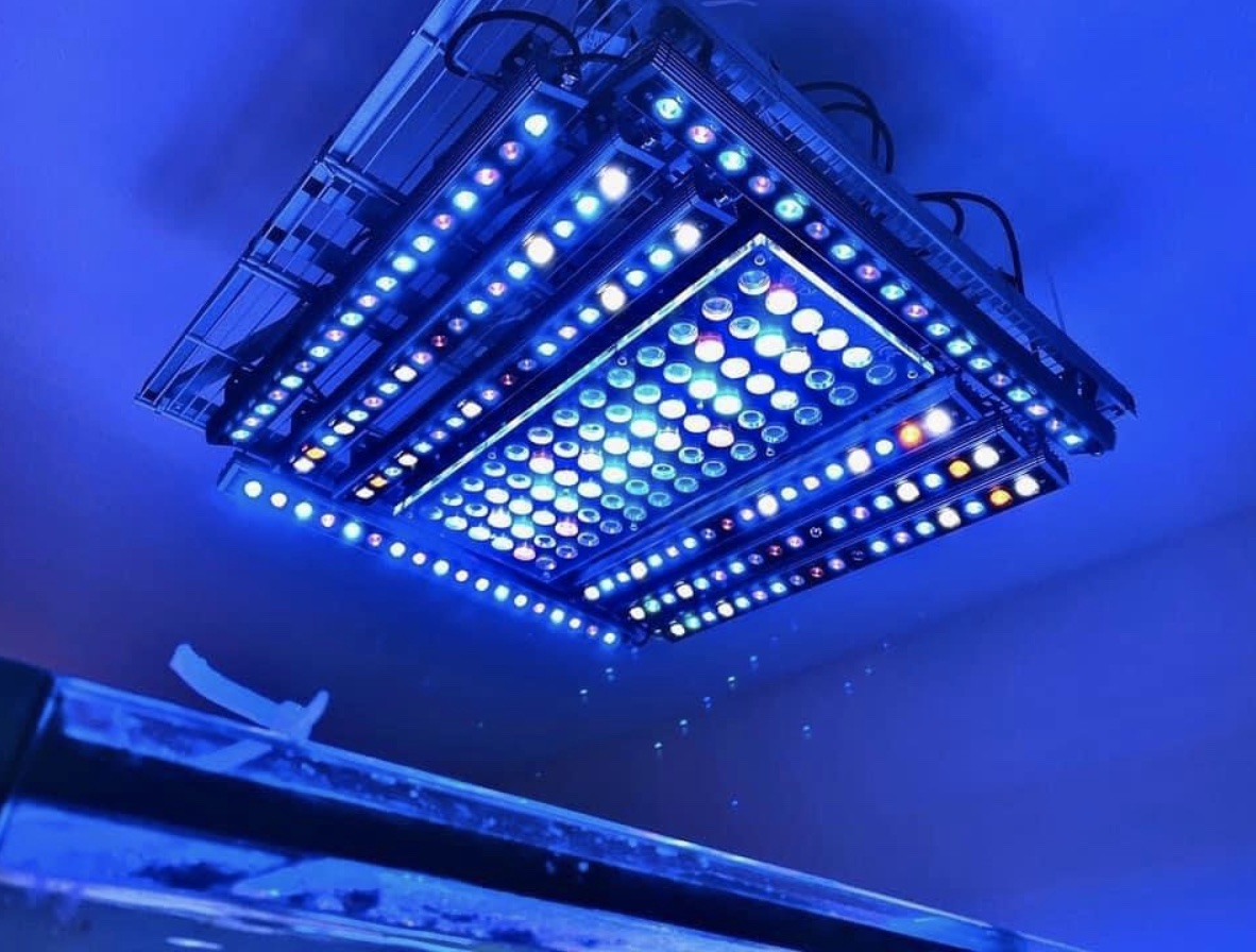 Orphek Atlantik and 8 units of Hybrid OR3 LED Bars