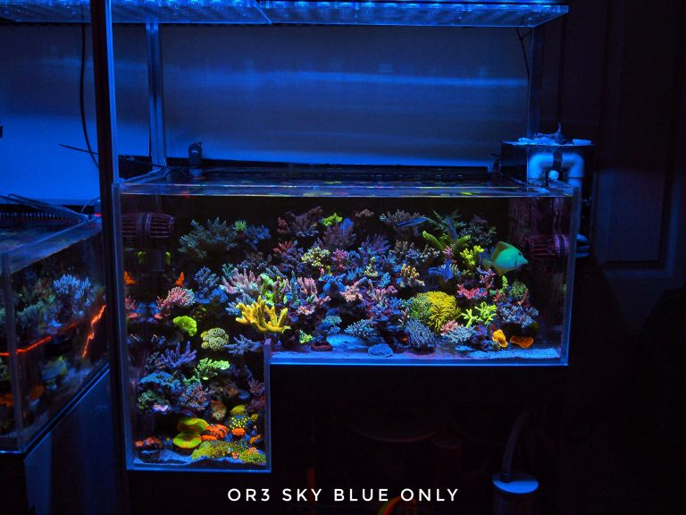 OR3_Sky_Blue_reef_aquarium_LED_Strip