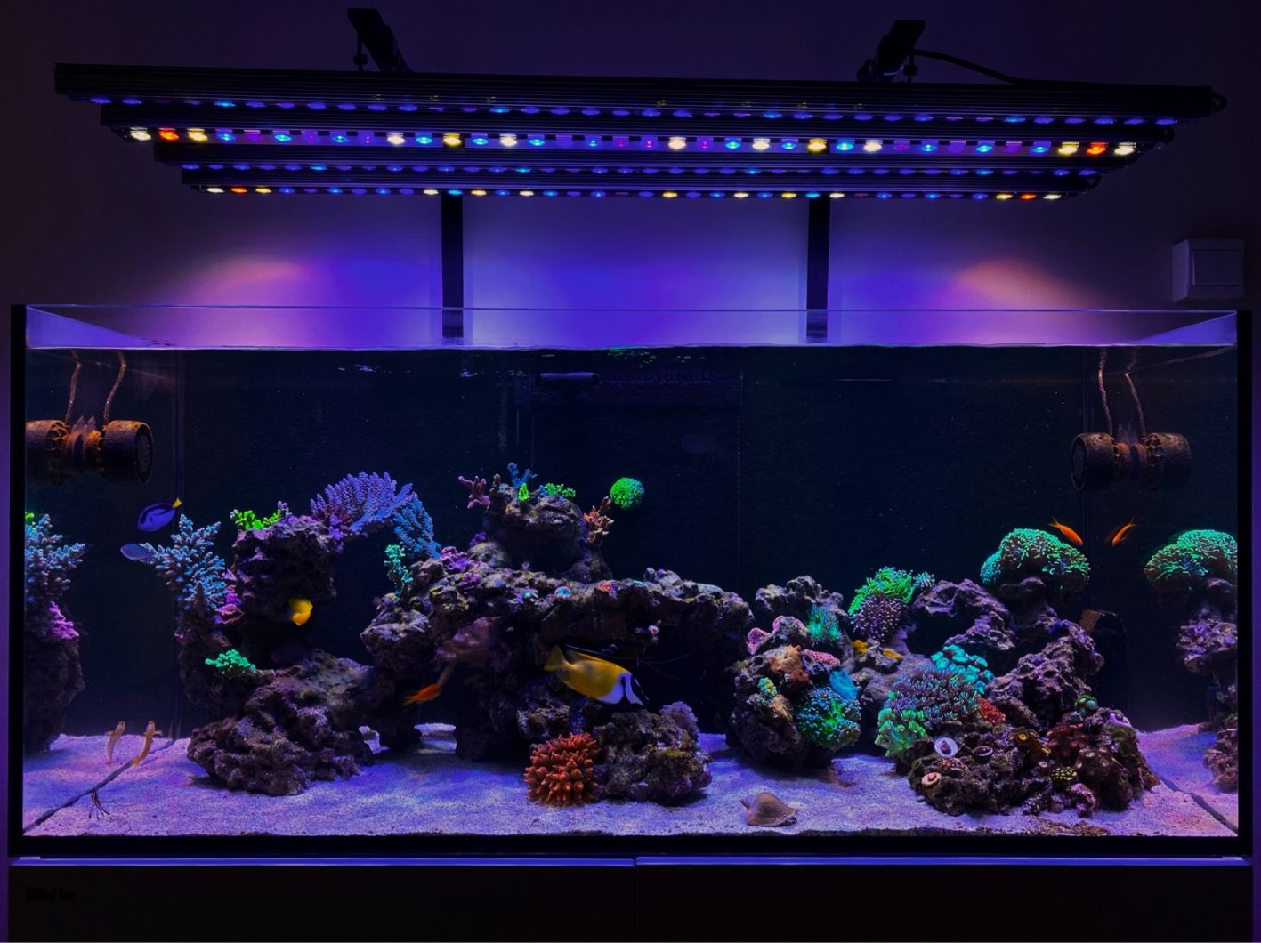 2x OR3 120 reef day , 2x OR3 120 Blue plus
