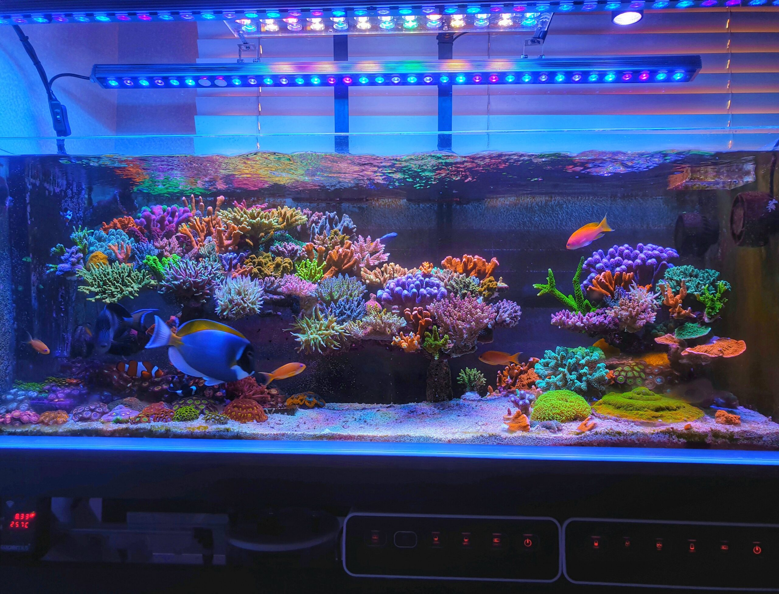 Beautiful colors and clear look under the mix of one Atlantik and OR3 Blue Plus LED Bars